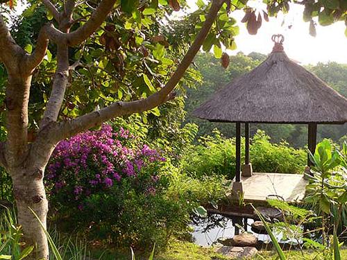 Jungle  bale bij de infinity pool van Villa Bali Breeze Lovina