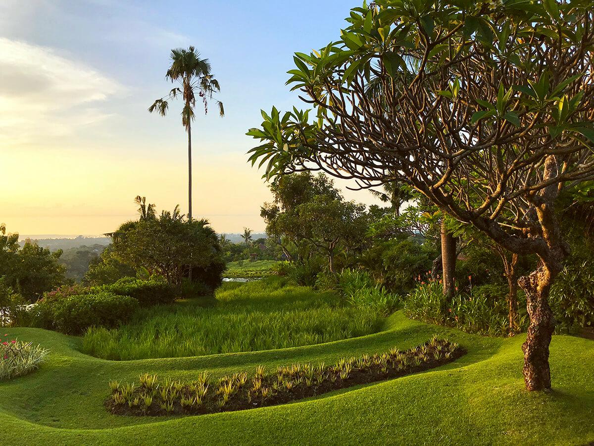 De tuin en de rijstvelden bij lage zon vanaf de veranda